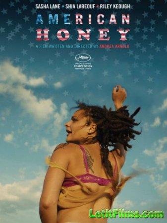 Скачать фильм Американская милашка / American Honey (2016)