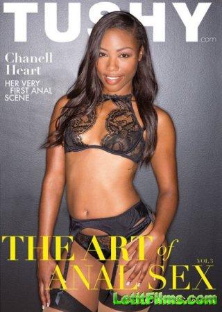 Скачать The Art of Anal Sex 3 / Искусство Анального Секса 3 [2016]