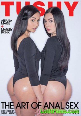 Скачать The Art of Anal Sex 4 / Искусство Анального Секса 4 [2017]