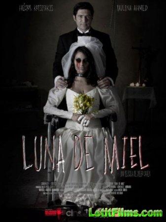 Скачать фильм Медовый месяц / Luna de Miel (2015)