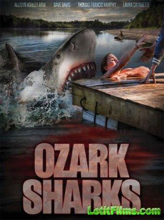 Скачать фильм Озаркские акулы / Ozark Sharks (2016)