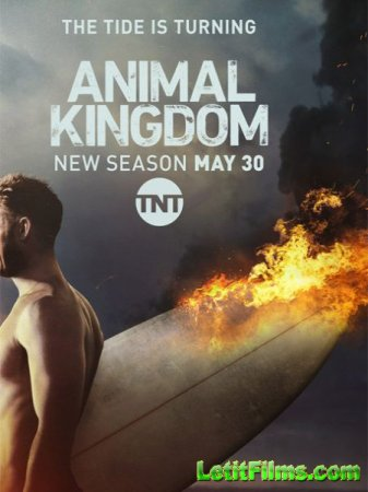 Скачать По волчьим законам / Animal Kingdom - 2 сезон (2017)