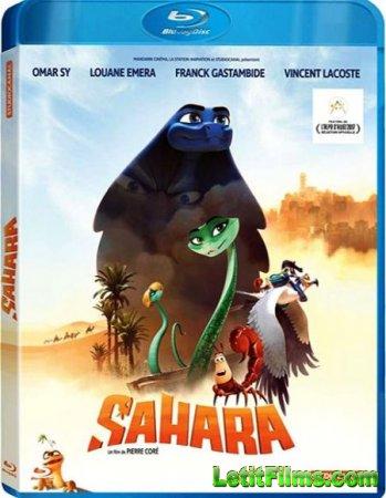 Скачать мультфильм Сахара / Sahara (2017)