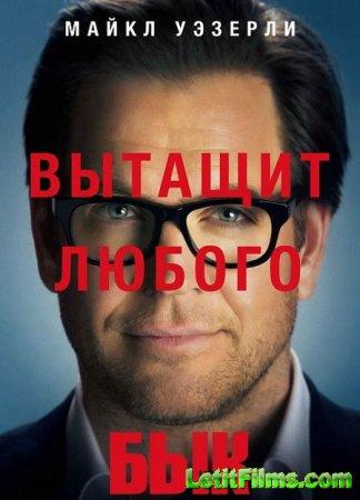 Скачать сериал Бык / Булл / Самец / Bull - 2 сезон (2017)