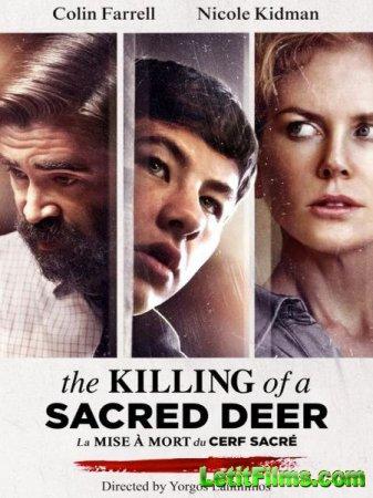 Скачать фильм Убийство священного оленя / The Killing of a Sacred Deer (201 ...