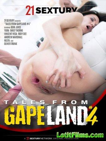Скачать Tales From Gapeland 4 / Рассказы из Дырко Ленда 4 (2017)