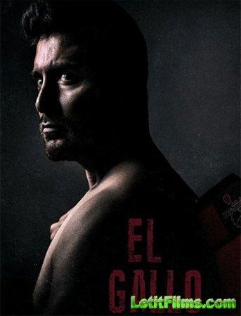 Скачать фильм Эль Галло / El Gallo (2018)