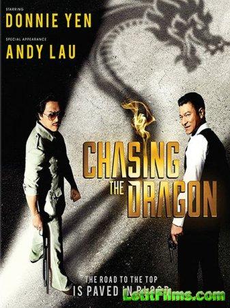 Скачать фильм В погоне за драконами / Chui lung (2017)