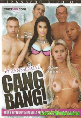 Скачать Transsexual Gangbang! / Транссексуальная Групповуха! [2016]