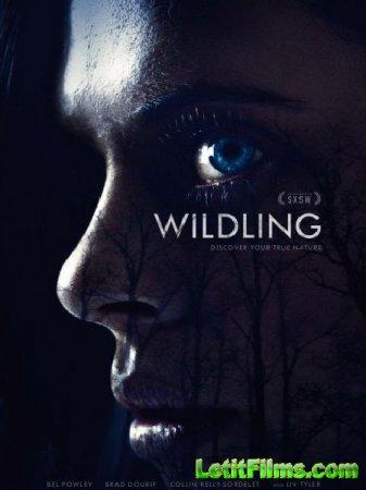 Скачать фильм Сага о чудовище / Wildling (2018)