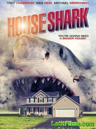 Скачать фильм Домашняя акула / House Shark (2018)