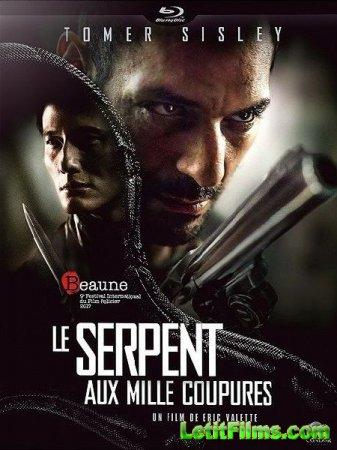 Скачать фильм Змей с тысячей порезов / Le serpent aux mille coupures (2017)