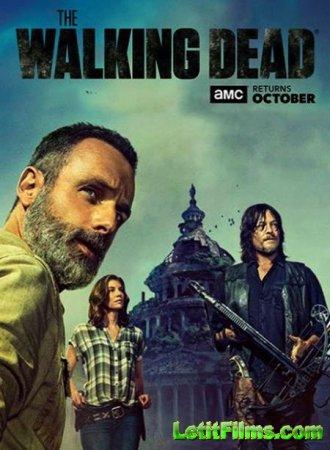 Скачать сериал Ходячие мертвецы / The Walking Dead - 9 сезон (2018)
