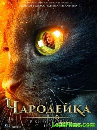 Скачать фильм Чародейка / Vildheks (2018)
