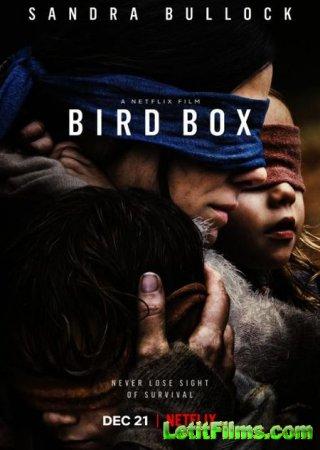 Скачать фильм Птичий короб / Bird Box (2018)