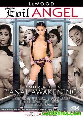 Скачать Emily Willis: The Anal Awakening /Emily Willis: Анальное Пробуждени ...