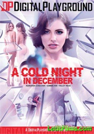 Скачать A Cold Night In December / Холодная Ночь В Декабре (2019)
