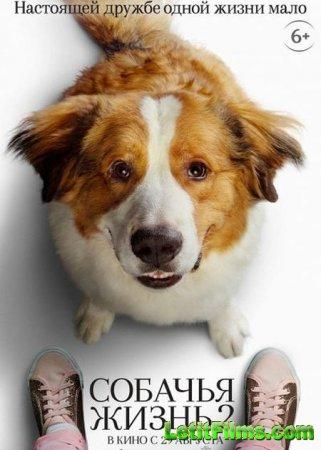 Скачать фильм Собачья жизнь 2 / A Dog's Journey (2019)