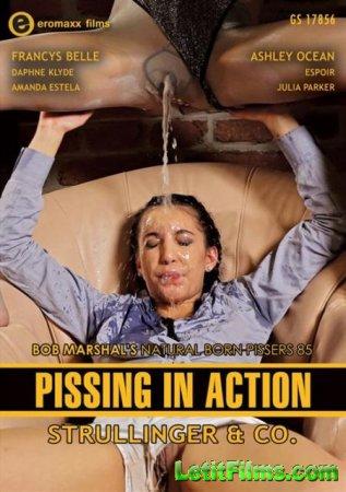 Скачать Pissing In Action - Natural Born Pissers 85 / Писсинг в действии -  ...