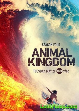 Скачать По волчьим законам / Animal Kingdom - 4 сезон (2019)