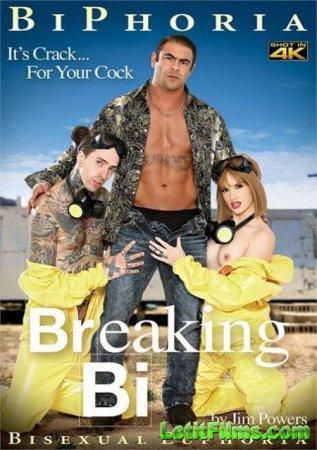 Скачать Breaking Bi / Во все тяжкие Би [2019]