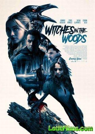 Скачать фильм Ведьмы в лесу / Witches in the Woods (2019)