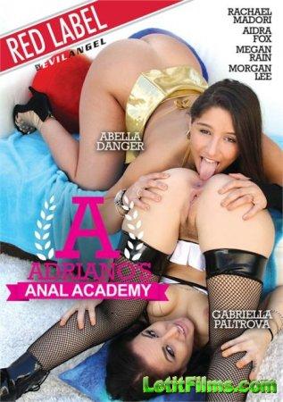 Скачать Adrianos Anal Academy / Анальная Академия Адриано (2019)