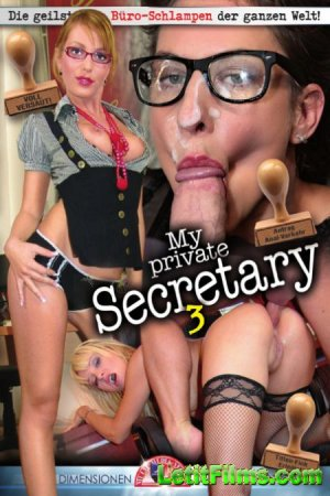 Скачать My Private Secretary 3 [2020]