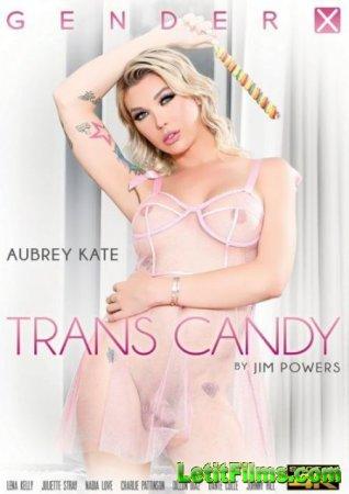 Скачать Trans Candy / Транс Конфета (2020)
