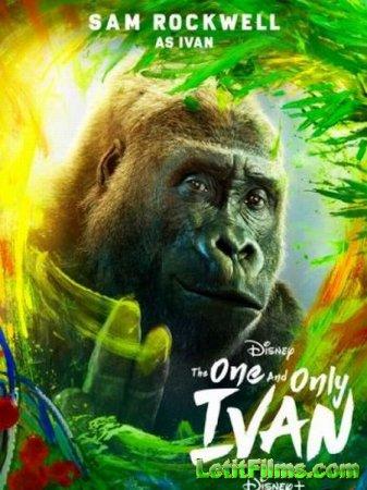 Скачать фильм Айван, единственный и неповторимый / The One and Only Ivan (2020)