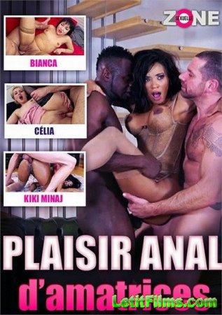 Скачать Plaisir anal damatrices / Анальное удовольствие любителей (2020)