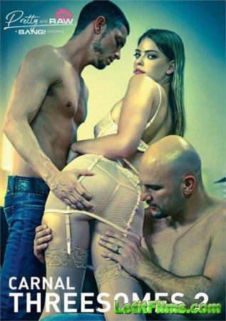 Скачать Carnal Threesomes 2 / Чувственный Секс Втроем 2