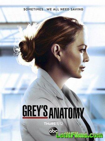 Скачать Анатомия страсти (Анатомия Грей) (17 сезон) / Grey's Anatomy [2020 ...